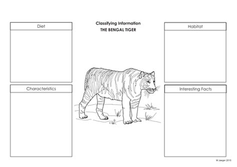 Reading Comprehension - Bengal Tigers by mimjaeger