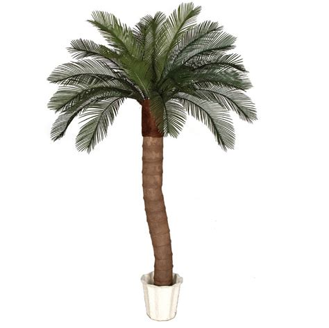 6 foot Artificial Outdoor Cycas Palm Tree: Ribbed
