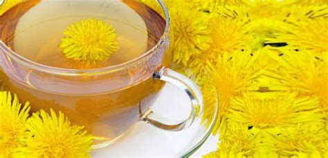 Cancer-Killing and Weight Loss Dandelion Root Tea