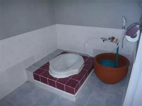 Will Indian toilets ever switch to toilet papers