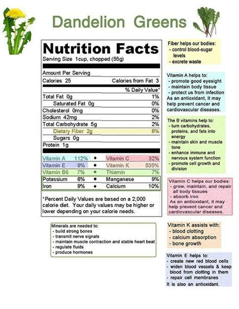 Nutrition facts on dandelion greens | Nutrition, Nutrition