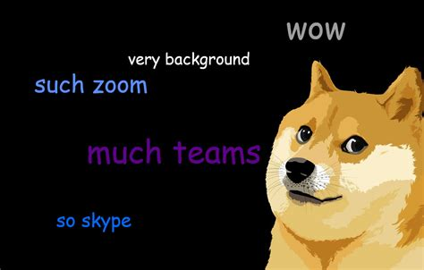 Background - Doge by Michael Gillett | Wallpapers