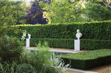 Box Instant Hedge from Practicality Brown