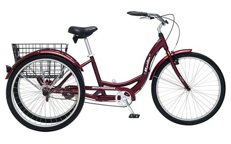 Best 20 Three-Wheel Electric Tricycles for Kids and Adults