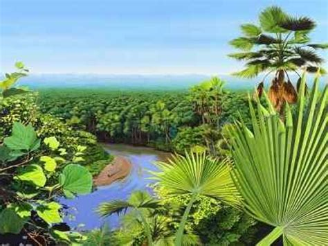 Plant Kingdom multiple choice questions and answers | MCQ