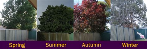 The Changing Seasons | Geography for kids | The K8 School