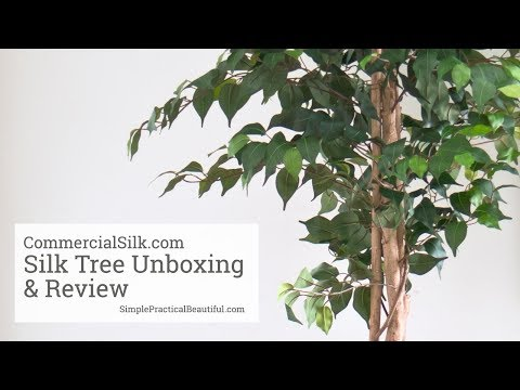 7 foot Artificial Fiddle Leaf Fig Tree: Potted   W-150080