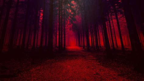 Forest With Trees In Red Effect HD Red Aesthetic